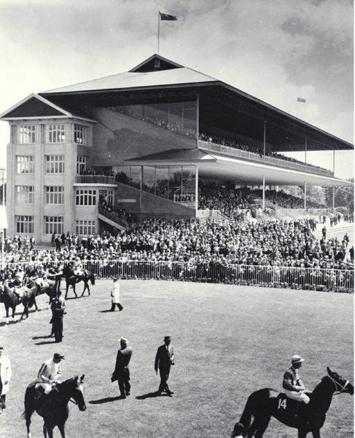 Horses parading in the ring at Riccarton Racecourse [ca. 1960], CCL PhotoCD 11, IMG0030