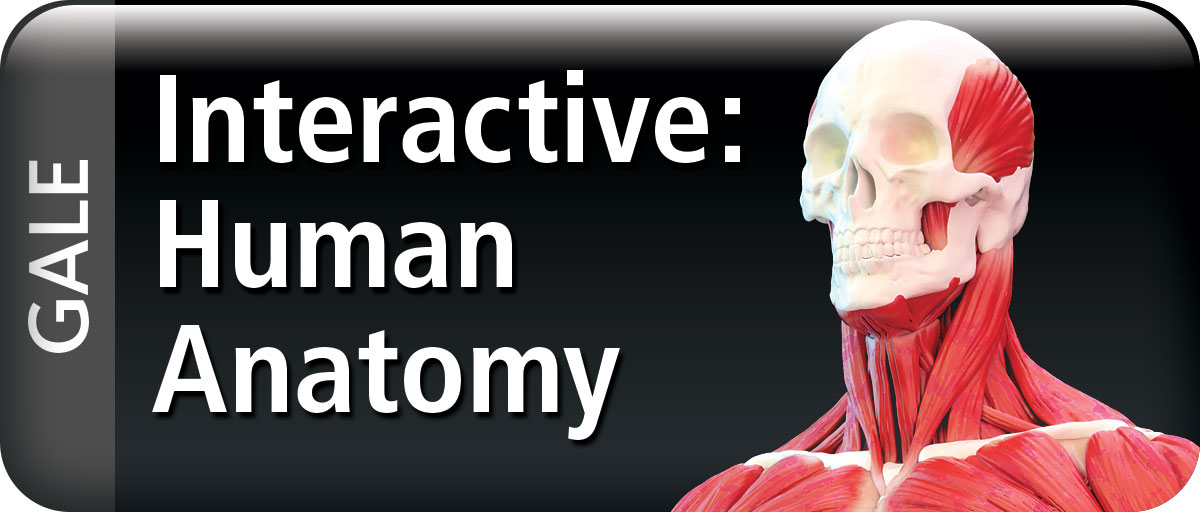 About Gale Interactive: Human Anatomy | Christchurch City Libraries